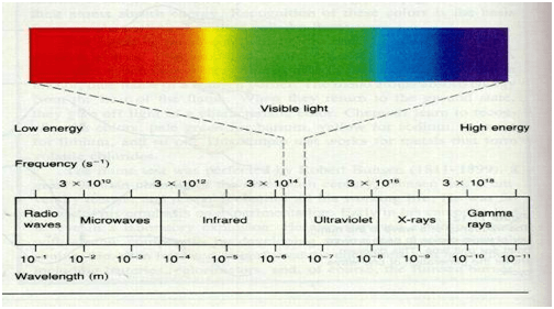 Spectrum of Light