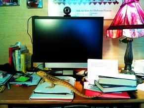 Sue's Desk