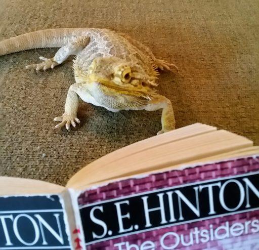 Ozzie reading