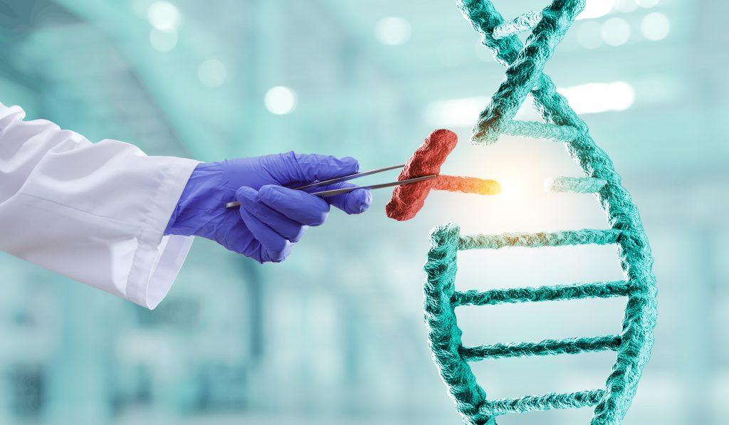 DNA molecule genetic modification