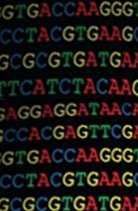 DNA building blocks ATGC