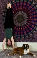 Handstand practice yoga