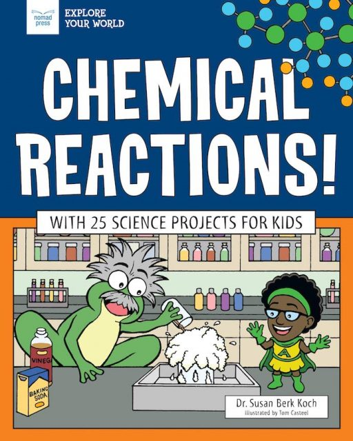 Chemical Reactions! by Dr. Susan Berk Koch