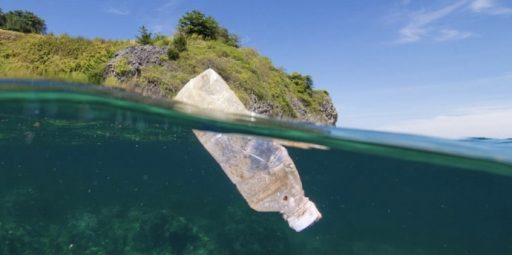 Bacteria-eating Plastics fight pollution