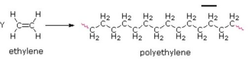 Monomer to polymer