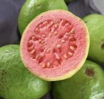 Which fruit is best for you? Make Sense of Science_ Guava