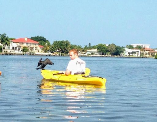 forensic science experiments at home crow kayak