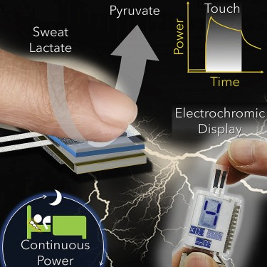 Biofuel Cell uses passive sweat