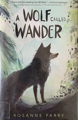 Best Middle Grade Fantasy books A Wolf called wander