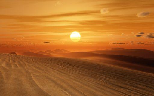 Desert MAKE SENSE OF SCIENCE