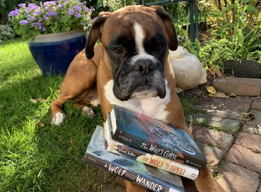 MIDDLE GRADE FANTASY WITH ANIMALS_Louie fav books outside