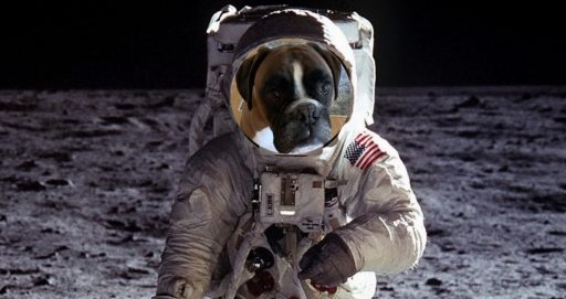 What Would You Need to Live on Mars _Louie